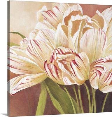 Graceful Tulips II