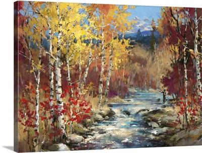 Lodge Creek