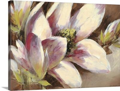 Magnolia Breeze