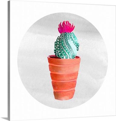 Mojave Cactus II
