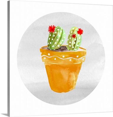 Mojave Cactus IV