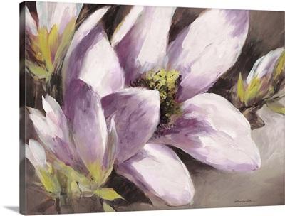 Plum Magnolia Breeze