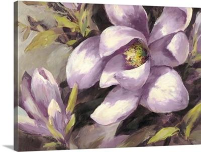 Plum Magnolia Whisper