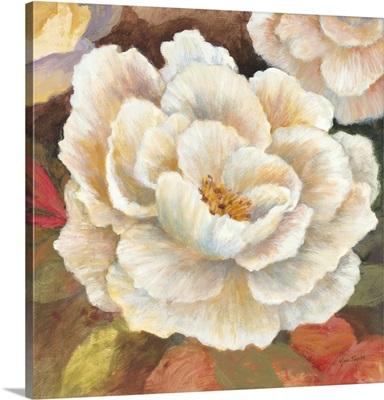 Ruffled Blossoms II