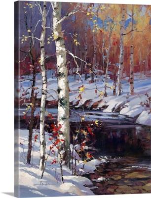 Snowy Birch