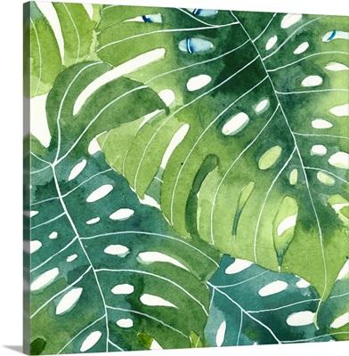 Tropical Botanica II