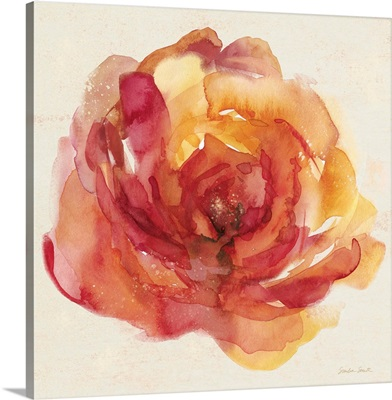 Watery Rose I