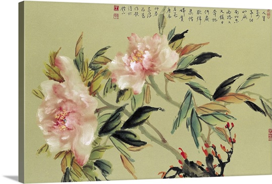 Enjoy the Blossoms