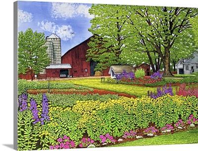 Amish Farmyard