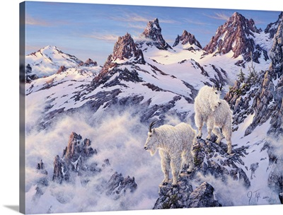 Among The Clouds - Mtn. Goat