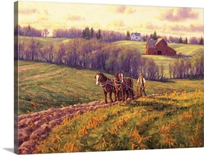 April Field Work