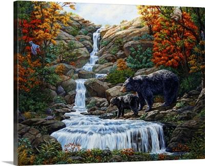Black Bear Falls
