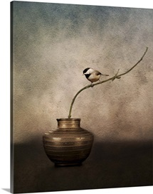 Black Capped Chickadee On A Vase