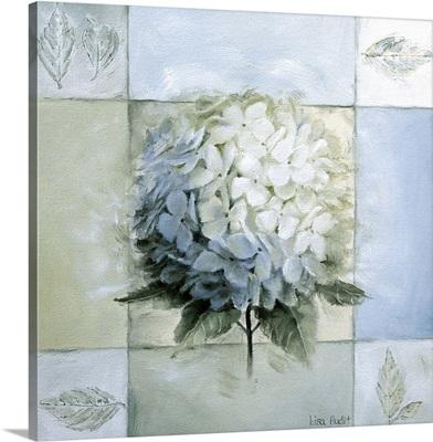 Blue Hydrangea Study I
