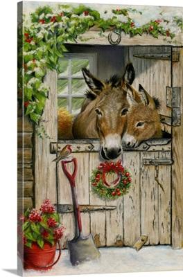 Christmas Donkeys