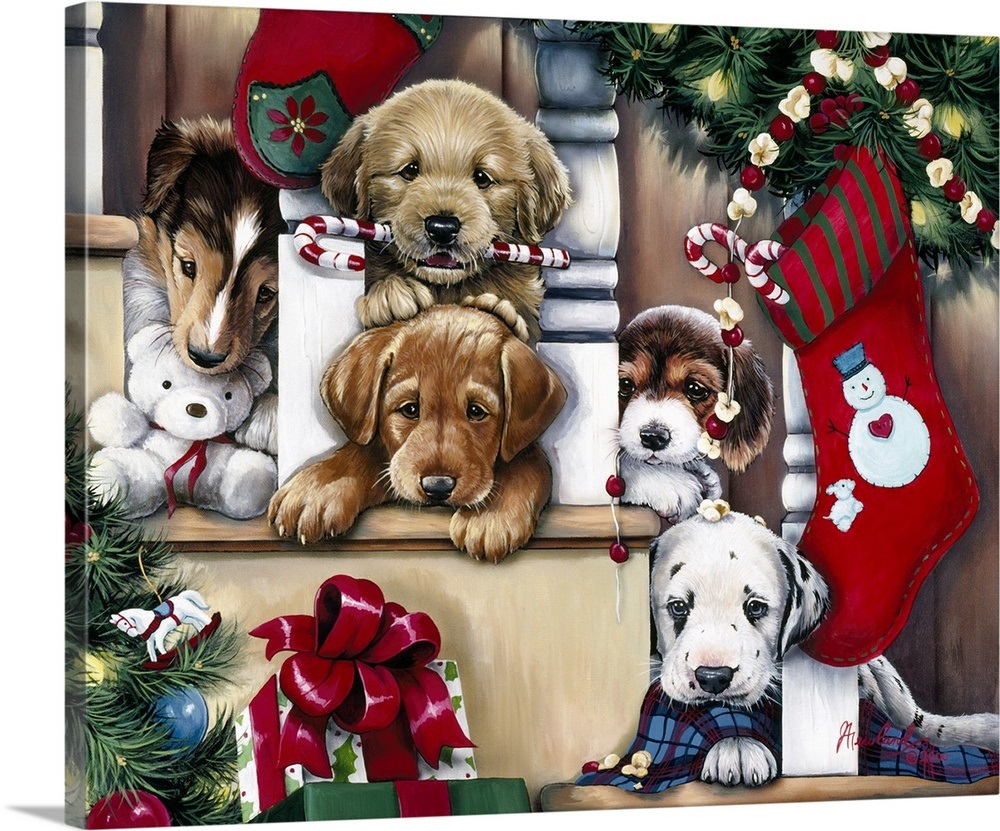 Christmas Puppies.Christmas Puppies On The Loose