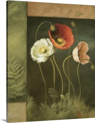 Designer Poppies