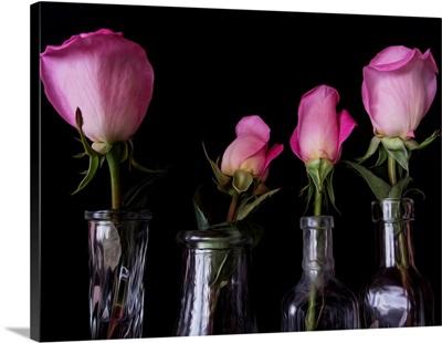Four Vases