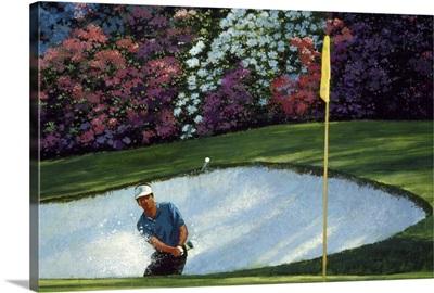 Golf Course VI