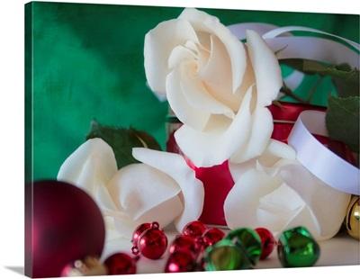 Holiday White