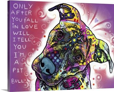 I'm a Pit Bull