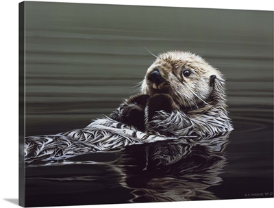 Just Resting - Sea Otter