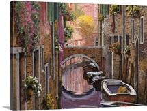 La Mimosa a Venezia