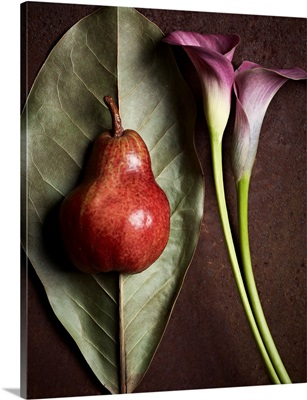 Leaf Pear and Calla Lily