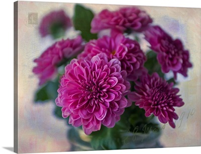 Mums the Word II