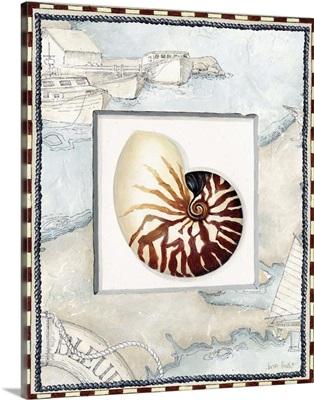 Nautical Shell II