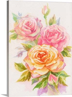 Pale Roses