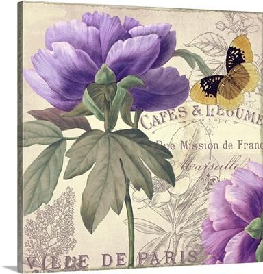 Petals of Paris III