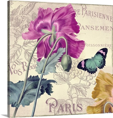 Petals of Paris IV