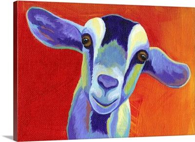 Pop Goat