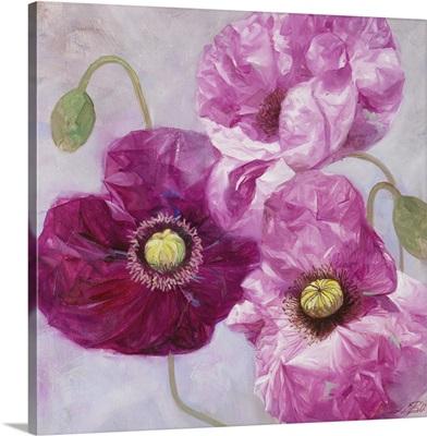Purple Poppies I