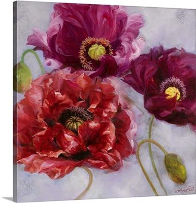 Purple Poppies II