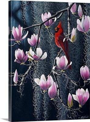 Southern Cheer - Cardinal