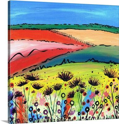 The Allium Fields