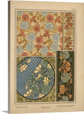 The Plant and its Ornamental Applications, Plate 42 - Nasturtium