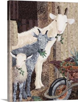 Three Goats and a Wheelbarrow