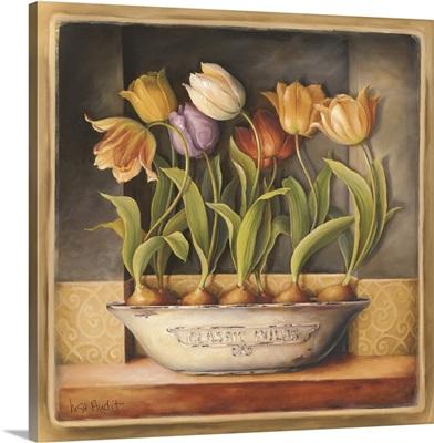 Tulip Classic Bulb