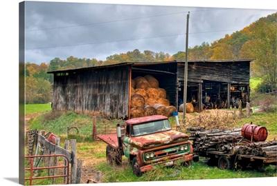 Turkey Creek Farm