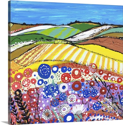 Wheatfields In Scotland