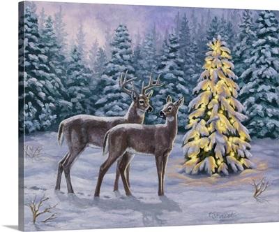 White-tail Christmas