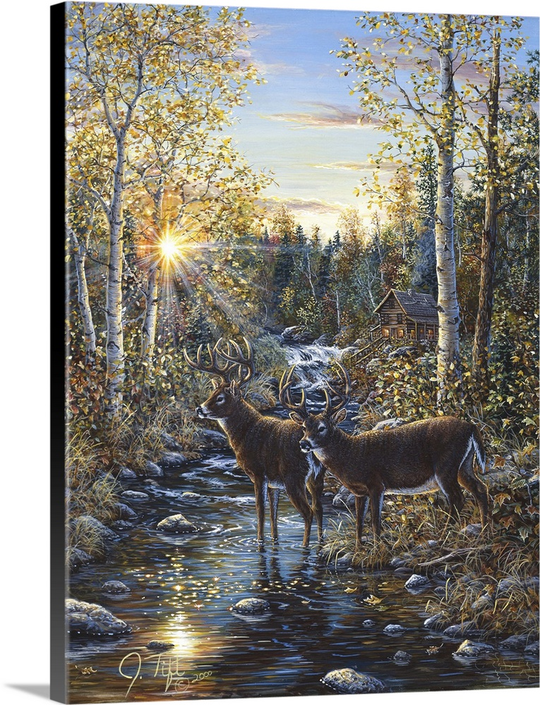Whitetail Deer Wall Art Canvas Prints Framed Prints Wall Peels Great Big Canvas
