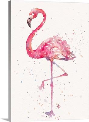 A Flamingos Fancy