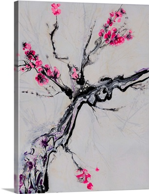Cherry-Bloom2