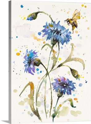 Cornflower and Bumblebee Dance