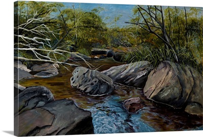 Georges River - Spring