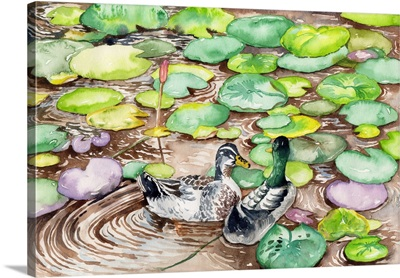 In The Lotus Pond